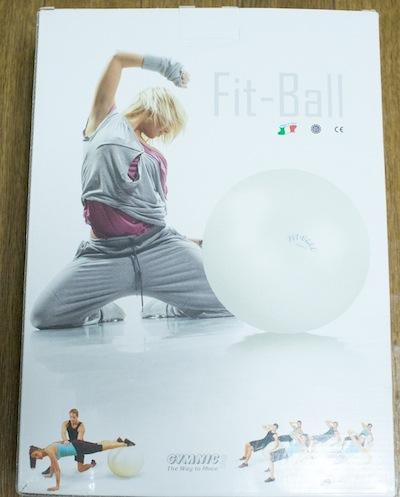 ギムニク社のフィットボール (65 cm) をゲット